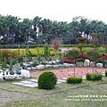 彰化溪州公園花在彰化 (29)