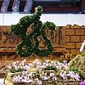 彰化溪州公園花在彰化 (7)