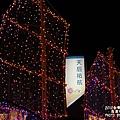 台灣燈會主燈區 (50)