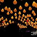 台灣燈會主燈區 (52)