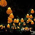 台灣燈會主燈區 (58)