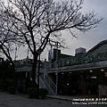 淡水榕堤河岸老街 (25)