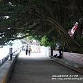 淡水榕堤河岸老街 (5)