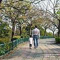 台中都會公園 (3)