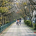 台中都會公園 (5)