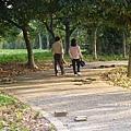 台中都會公園 (48)