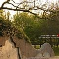 台中都會公園 (94)