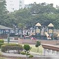 豐樂公園洋紅風鈴木 (34)