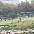 豐樂公園洋紅風鈴木 (35)