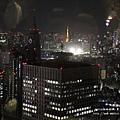 東京都廳 (54)