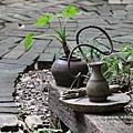 溪州落羽松田中石頭魚 (95)