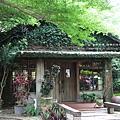 溪州落羽松田中石頭魚 (123)