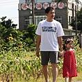 觀音向陽農場 ~(44)