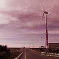 觀音向陽農場 ~(223)