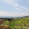 三鶯藝術村(172)