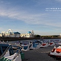 新竹南寮漁港 (4)