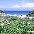 墾丁東半島 -滿洲沙灘(43)