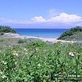 墾丁東半島 -滿洲沙灘(42)