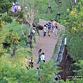 台中秋紅谷生態公園 (38)