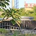 台中秋紅谷生態公園 (46)