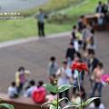 台中秋紅谷生態公園 (118)