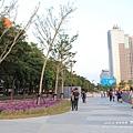台中秋紅谷生態公園 (148)