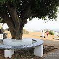 旗津燈塔風車公園一日遊 (197)