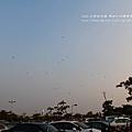 旗津燈塔風車公園一日遊 (202)