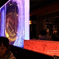 金典綠園道aqua pica創意火鍋 (142)