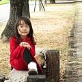 北斗河濱公園美人樹 (73)