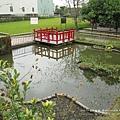 北斗河濱公園美人樹 (99)