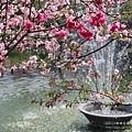 芬園花卉休憩園區 (41)