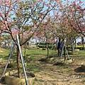 芬園花卉休憩園區 (67)
