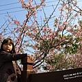 芬園花卉休憩園區 (77)