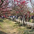 芬園花卉休憩園區 (95)