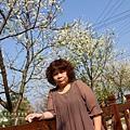 芬園花卉休憩園區 (103)