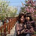 芬園花卉休憩園區 (108)