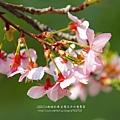 芬園花卉休憩園區 (131)