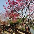 芬園花卉休憩園區 (143)