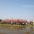 芬園花卉休憩園區 (185)