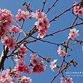 芬園花卉休憩園區 (202)