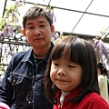梅峰農場紫藤花 (5)
