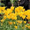 梅峰農場春之饗宴 (57)