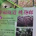 梅峰農場春之饗宴 (165)