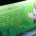 七股黑面琵鷺保育中心 (42)