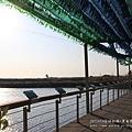 七股黑面琵鷺保育中心 (68)