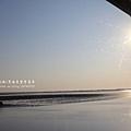 七股黑面琵鷺保育中心 (117)