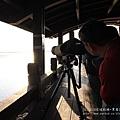 七股黑面琵鷺保育中心 (128)