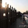 七股黑面琵鷺保育中心 (163)