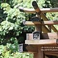 桃園神社 (76)